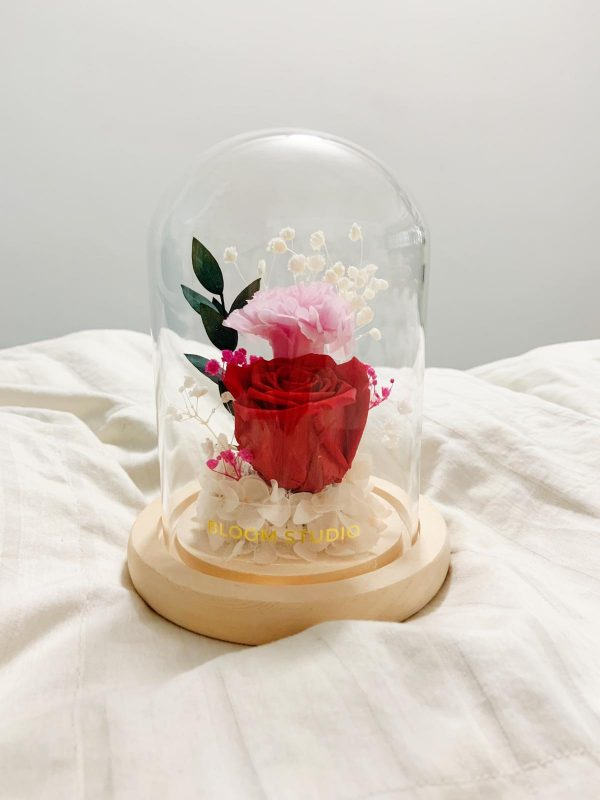 preserved flower dome